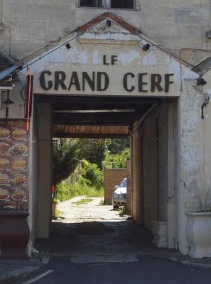 Grand_Cerf